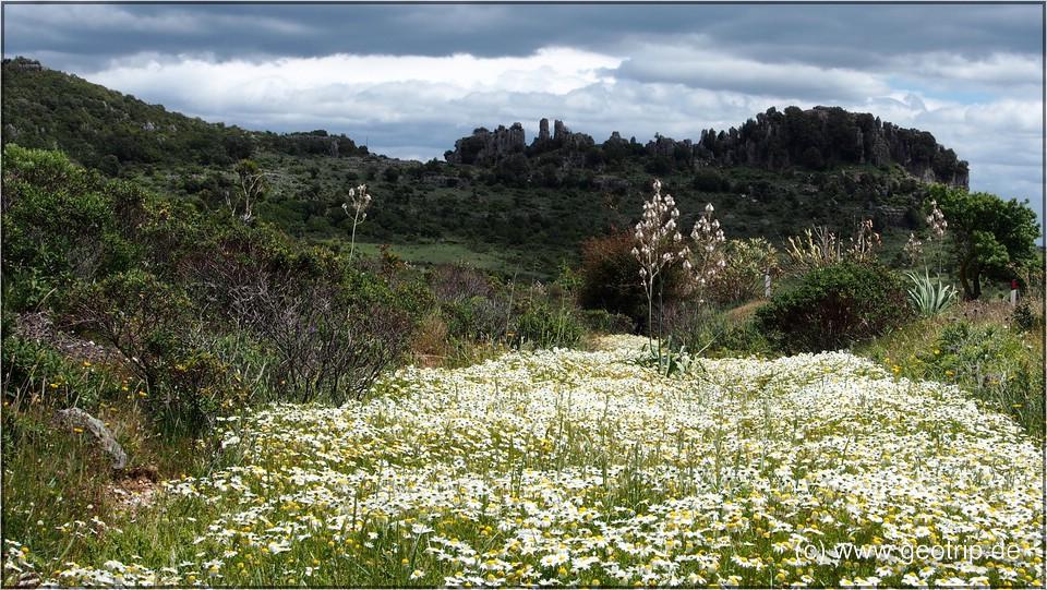 Sardinien_2013reiseberichte_122