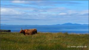 Schottland13_250