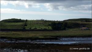 Schottland13_291