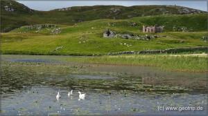 Schottland13_331