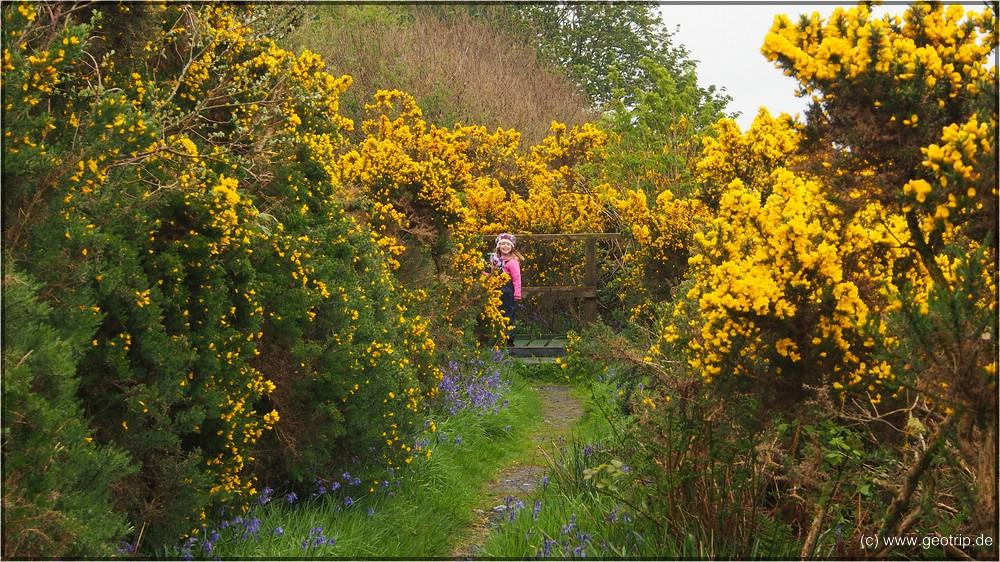 Reisebericht_Wohnmobil_Schottland2014_0175