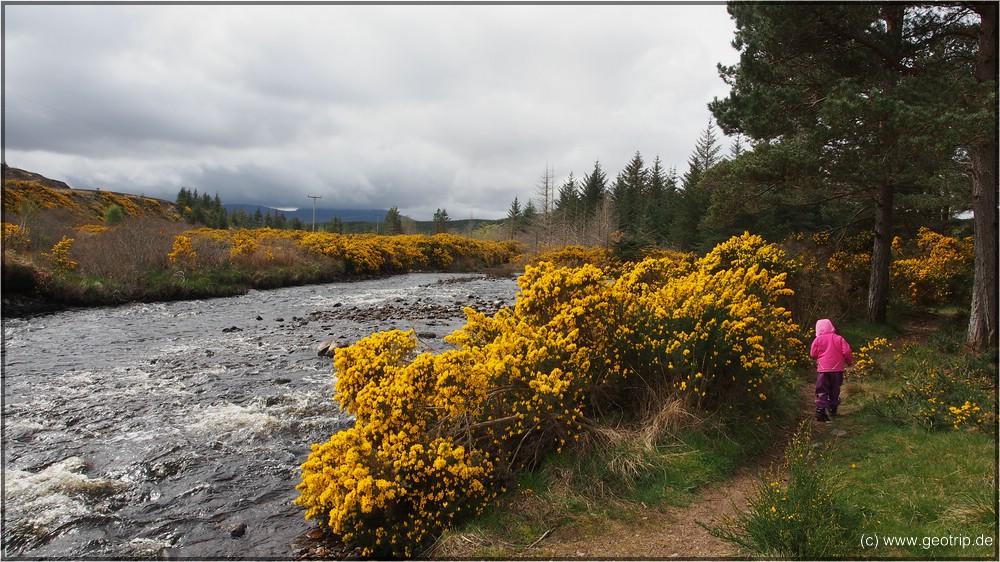 Reisebericht_Wohnmobil_Schottland2014_1152