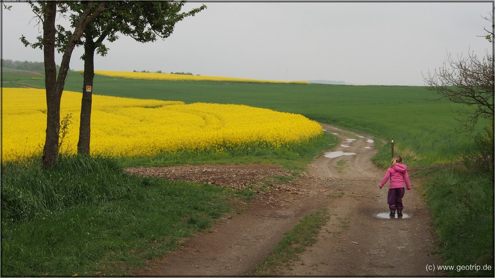 Reisebericht_Wohnmobil_Mosel_Eifel2014_461