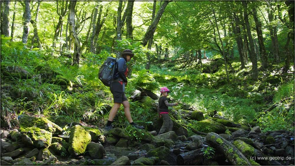 Der Weg zum Wassserfall Cascade de Biche