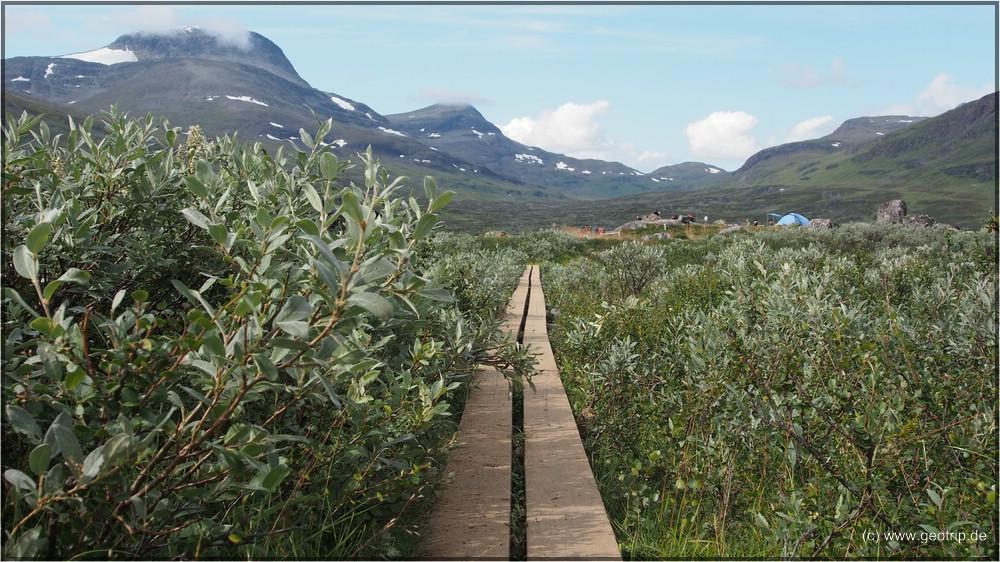 Diese Holzstege begleiten uns kilometerweit durch den Sumpf