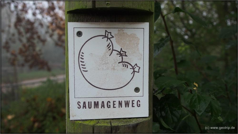 Womo_Pfalz07