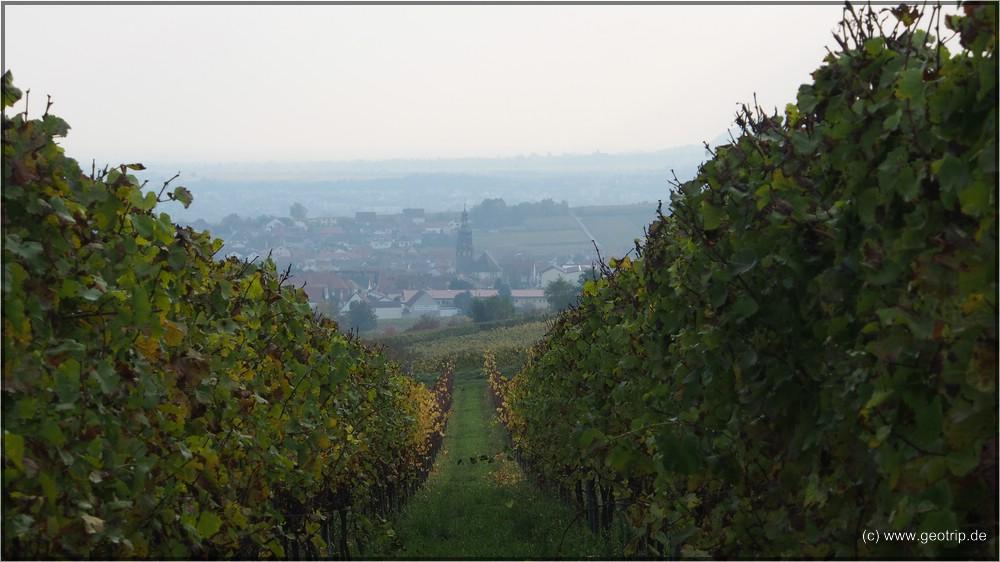 Unser Dorf von gestern - Kallstadt