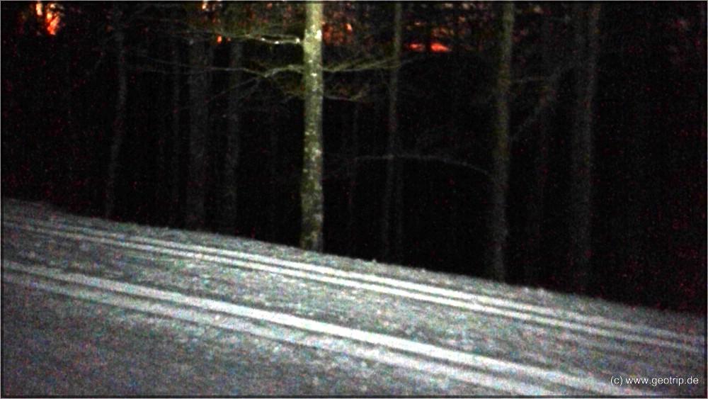 Langlauf im Dunkeln (Handyphoto, so siehts auch aus)