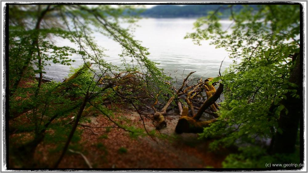 hier am Ufer entlangzulaufen