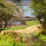 Hurra, Islay – again
