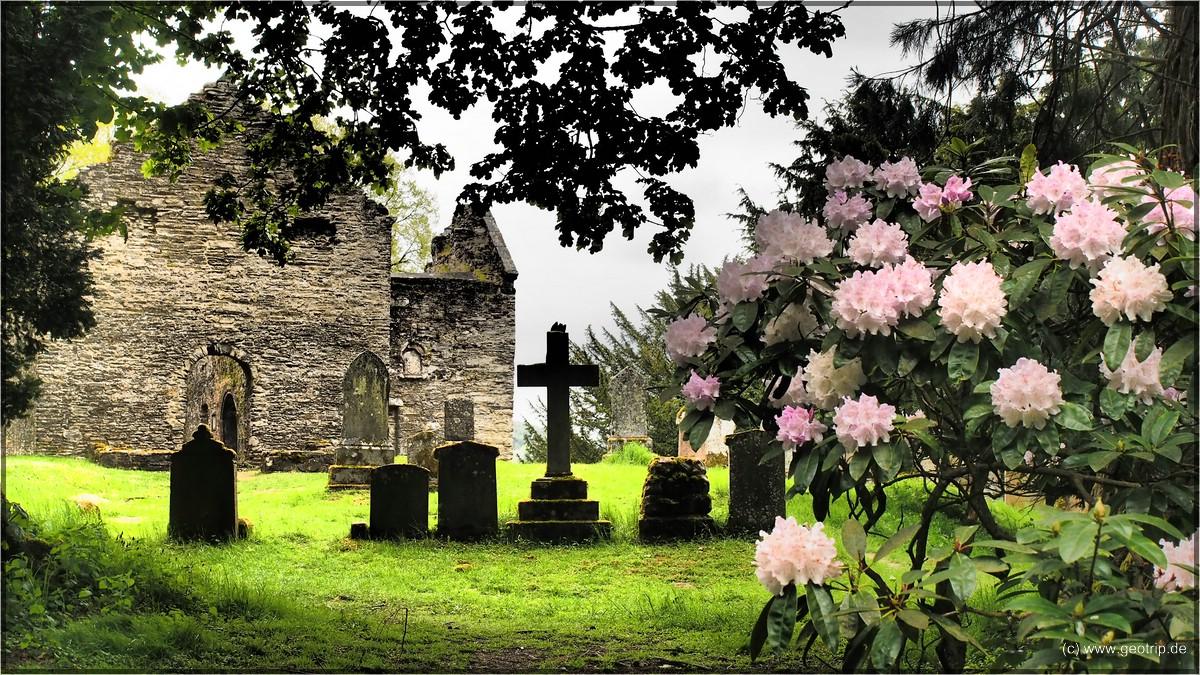 Alte Kirche, alter Friedhof im Kontrast zu jungen Blüten