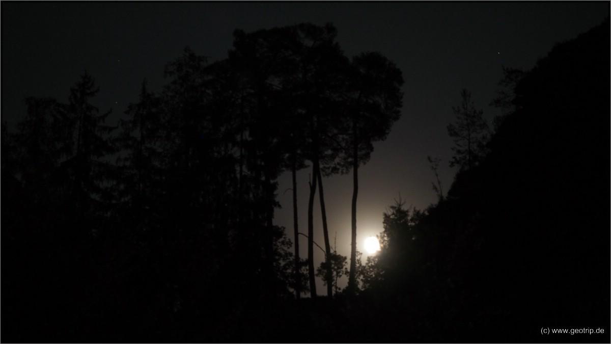 Nacht in der Pfalz