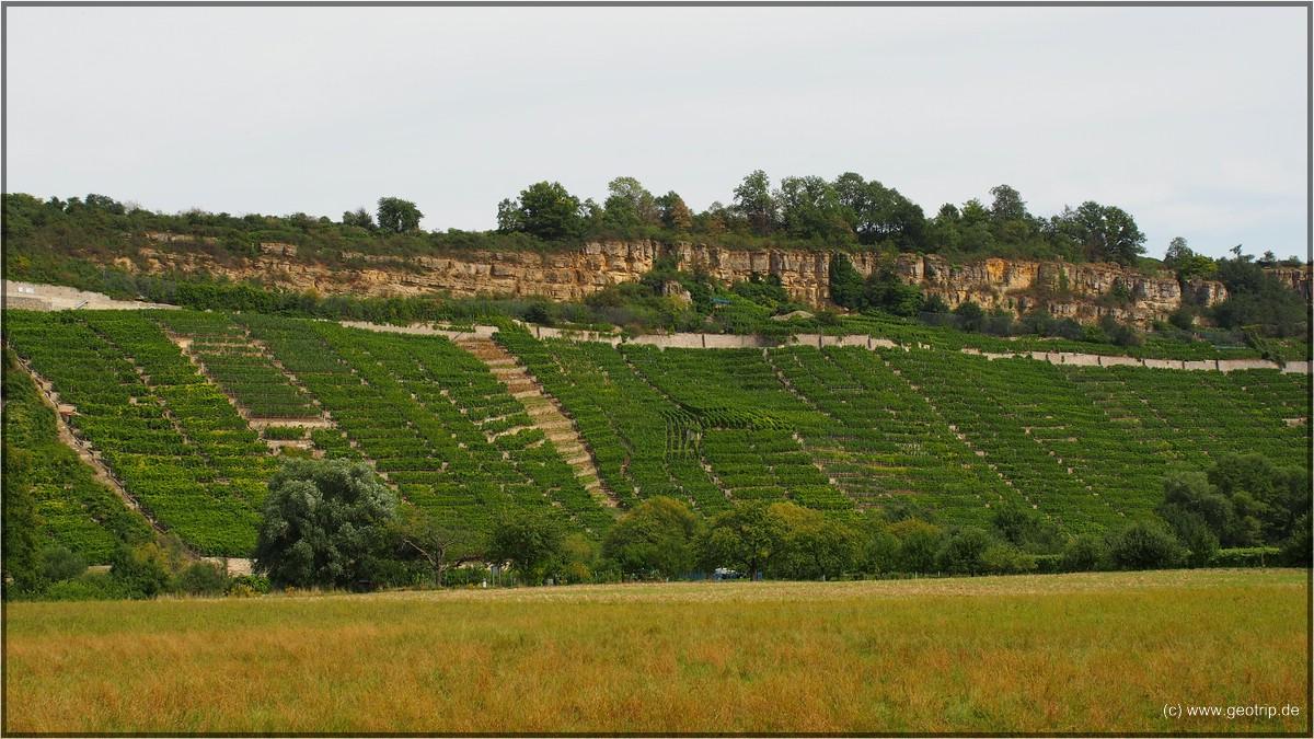 Die Felsengärten von Besigheim