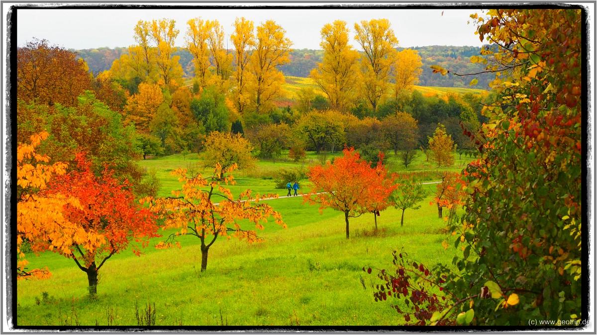 Eine schöne Herbsttour