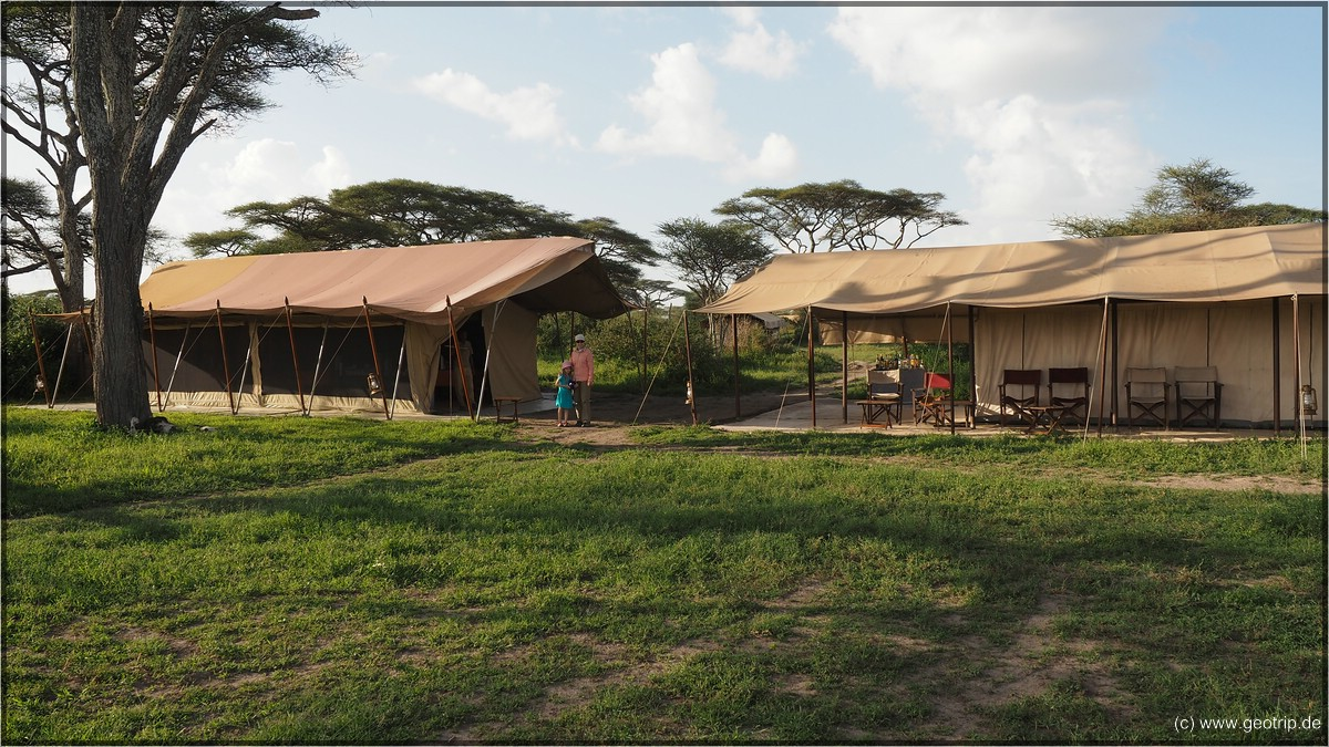Savannah Teted Camp, mitten in der Serengeti - Bar und Küchenzelt