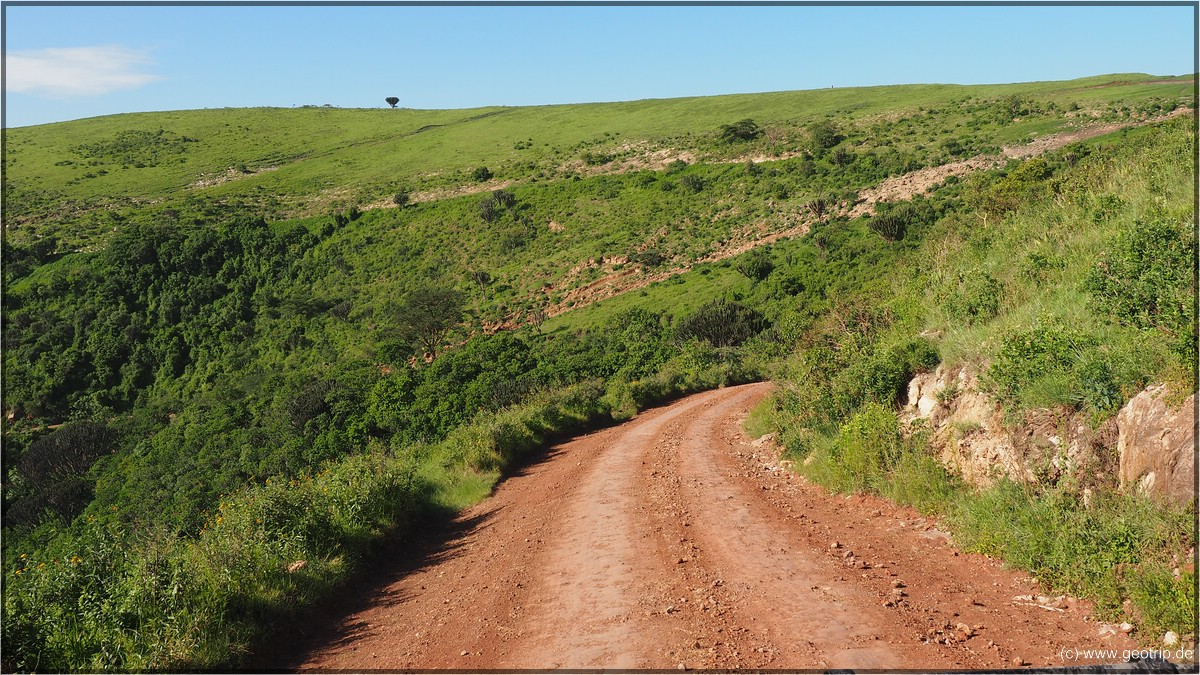 Abwärts - wie steil es wirklich ist, kann man auf dem Bild nicht vermitteln...