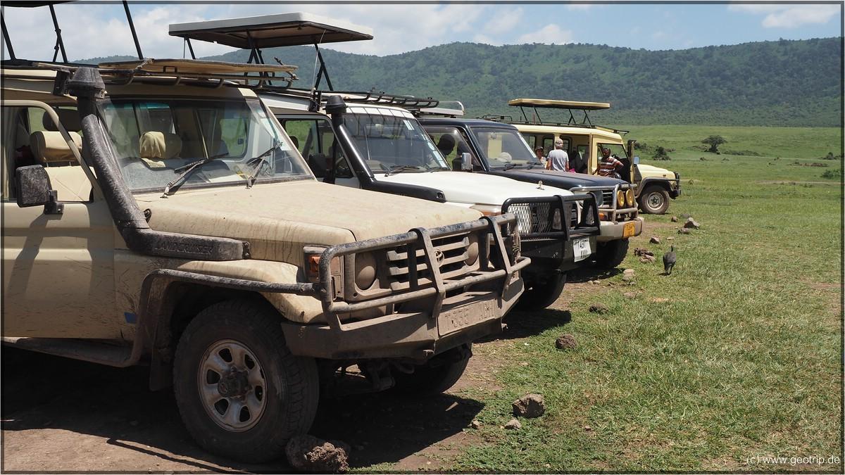Stehen dei Safarijeeps (genauer Landcruiser) aufgereiht