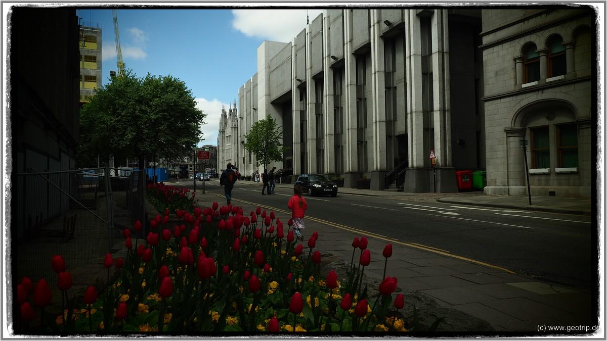 Die Granitstadt zeigt sich doch noch versöhnlich - mit blauem Himmmel und blühenden Blumen