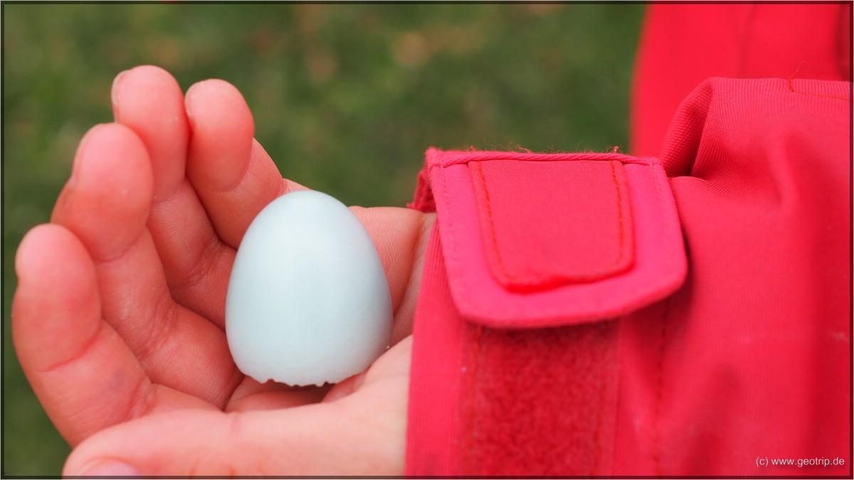 Viele blassblaue Eierschalen finden wir  hoffentlich sind die alle geschlüpft