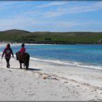 Ein toller Abschlusstag auf den Shetlands