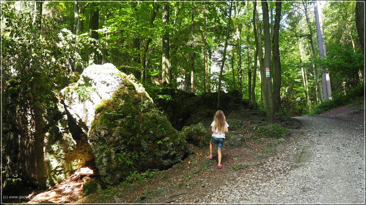 wir latschen durch den Wald