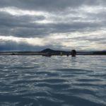 Hochtemperaturgebiete laufend und schwimmend